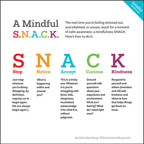 Mindful S.N.A.C.K.jpg