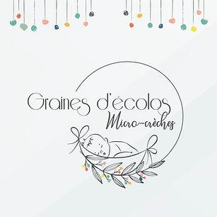 grainesdecolos-logo-identitevisuelle-graphiste-freelance-lyon-savecreative