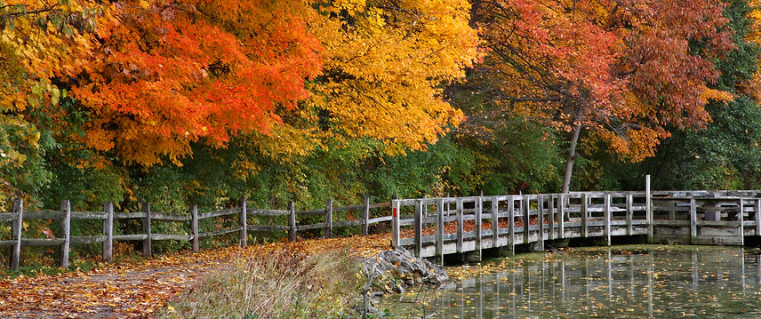Fall Ohio Running Picture.jpeg