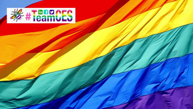 Team CES Supports the LGBTQ Community Happy Pride to Everyone