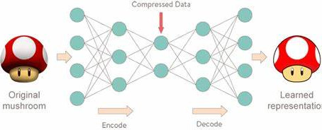 Auto encoder-A Deep Learning Approach for Data compression