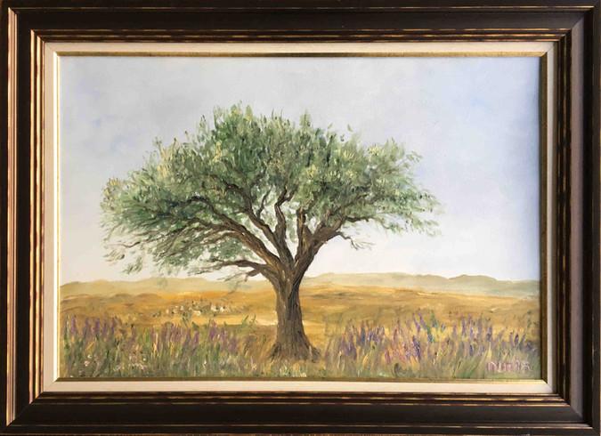 Yalnız Zeytin Ağacı