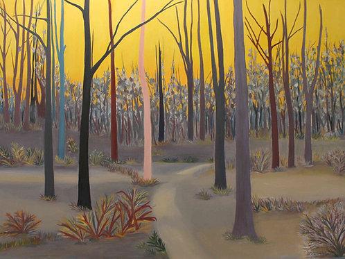Sarıgök Ormanı - Sipariş