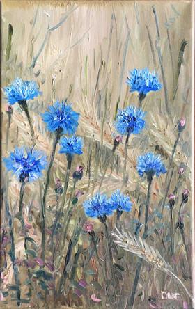 Mısır Çiçekleri