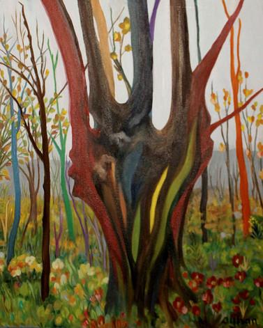 Yüce Ağaç