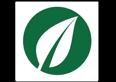 leaf 10_Prancheta 1.png