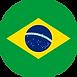 Brazilian_Flag_-_round.svg.png
