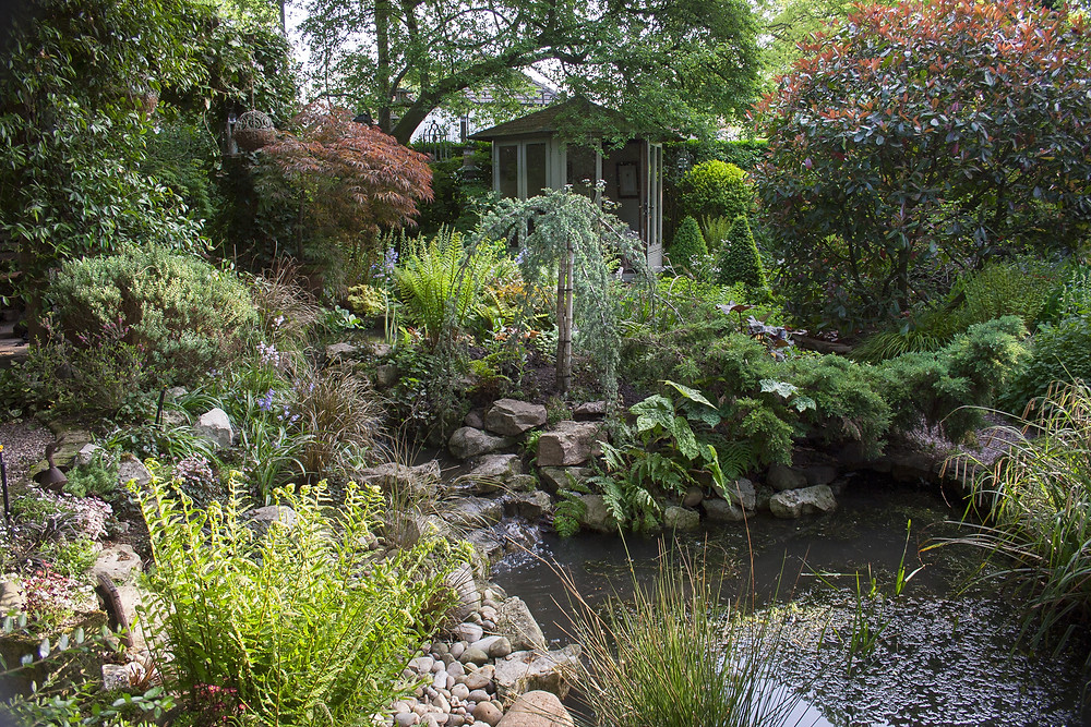 Large wildlife pond with sloping sides