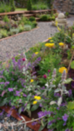 Peter Clare Rookin House summer planting
