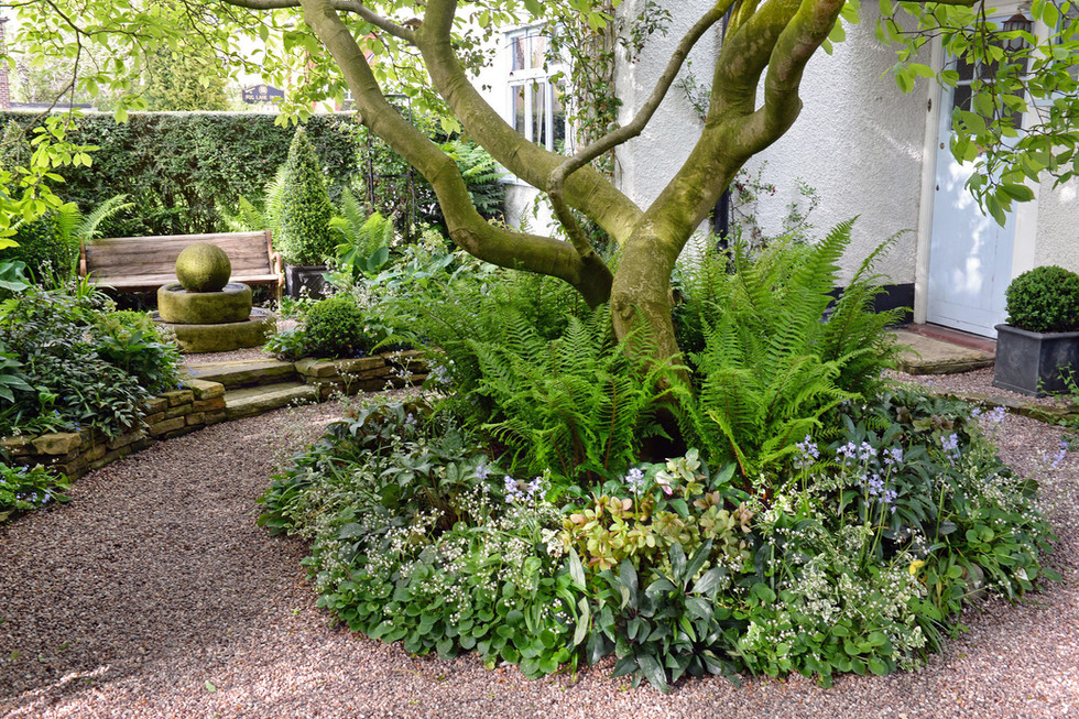 Shady front garden