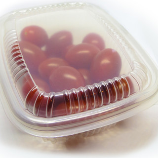 Biodegradable Plastic Food Container