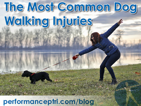 The Most Common Dog Walking Injuries