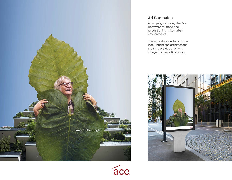 ACE Full Web Pages-12.jpg
