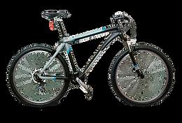 bike .png
