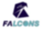 Falcons.png