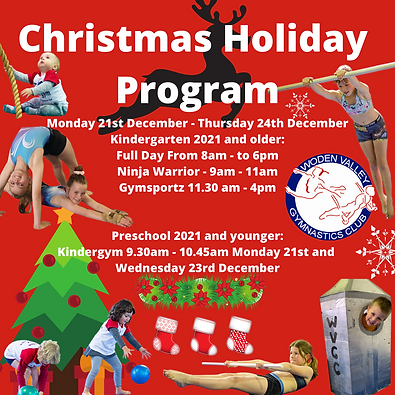 Christmas Holiday Program 2020.png