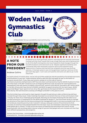 WVGC Term 3 Newsletter 2020.png
