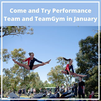 Come and Try Performance Team and TeamGy