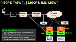 ( IBCF & TrGW ) , ( MGCF & IMS-MGW )
