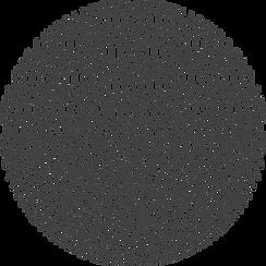 0210-RJE-Cirkel-Frans-donker_edited_edit