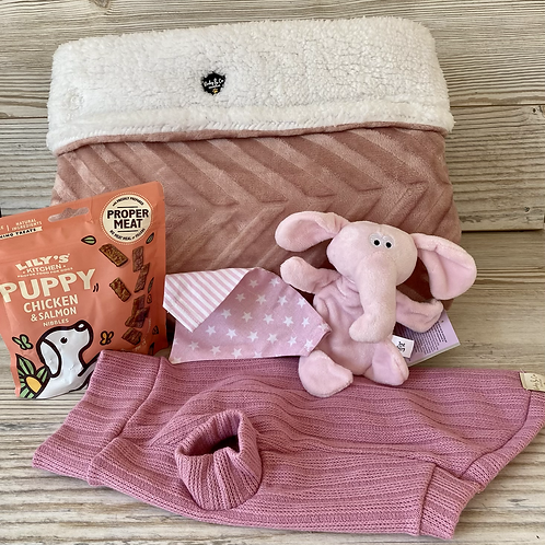 Puppy welcome gift set