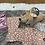 Thumbnail: Bedtime gift set