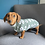 Thumbnail: T-jersey panda Jummy & Dotty doodle sweatshirt jummy