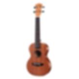 Enya Ka soprano ukulele with bag .png