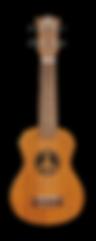 Pukanala soprano ukulele with bag model