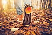 fall-walk.jpg