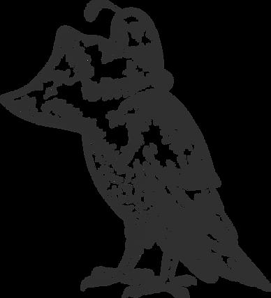quail_edited.png