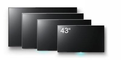 43'' LED Multi-Sync Monitor (HDMI)(16:9)
