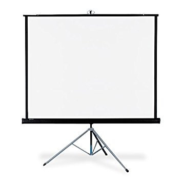 5' Front Projection Tripod Screen