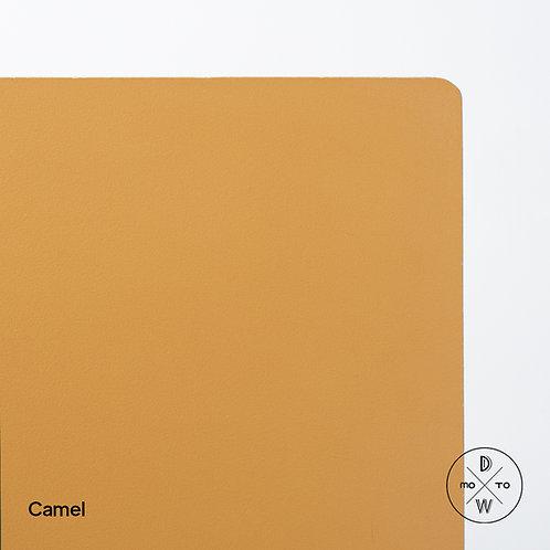 Camel on Board