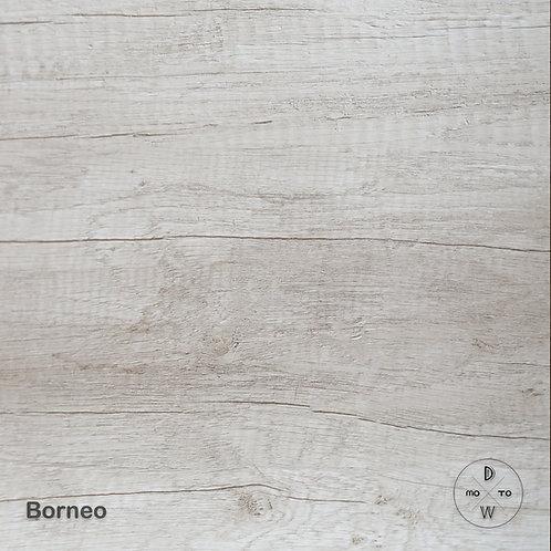 Borneo Light
