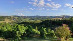 Reading letterario, Cena in Vigna e degustazione vini sabato 1 agosto a Castello di Serravalle
