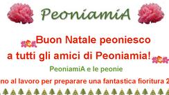 Auguri da Peoniamia