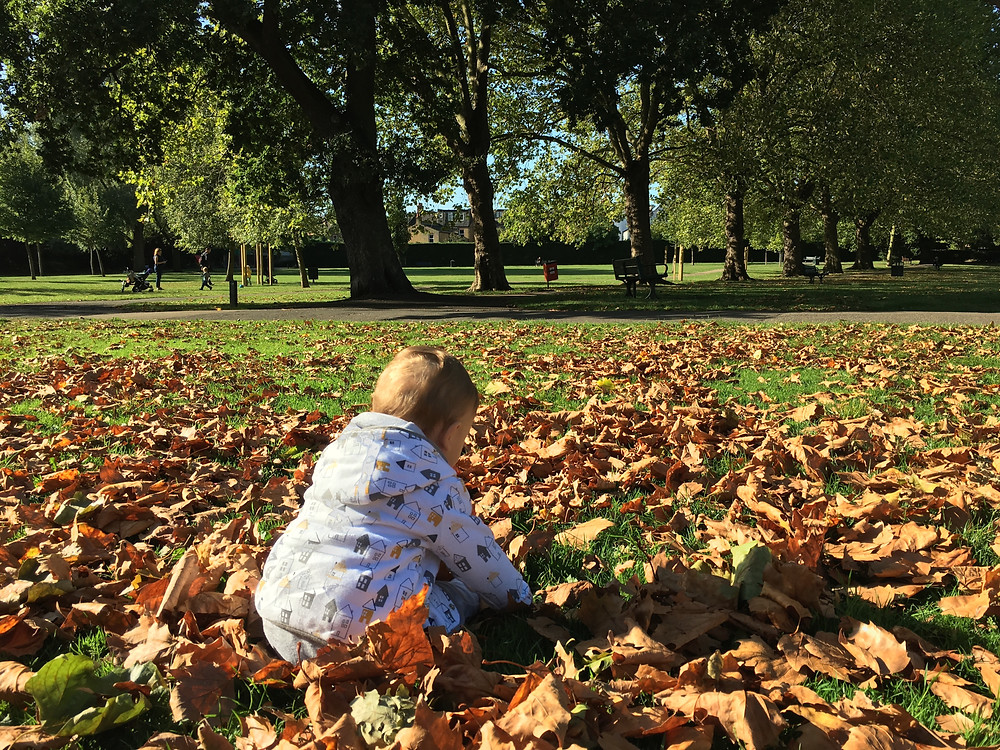 parque otoño