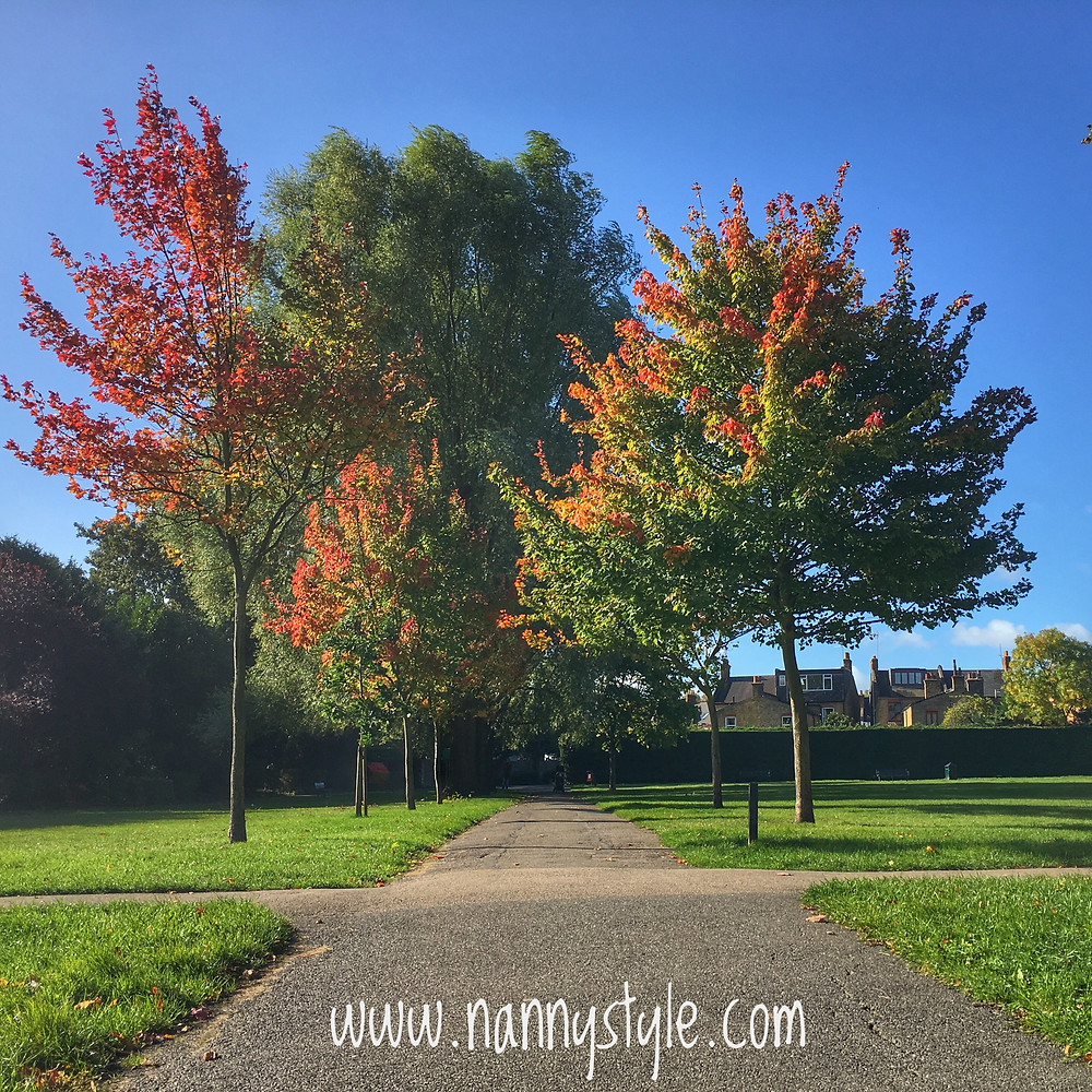 London Park Autumn