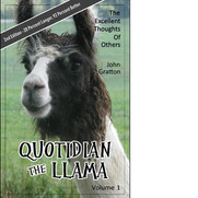 Quotidian the Llama Volume 1