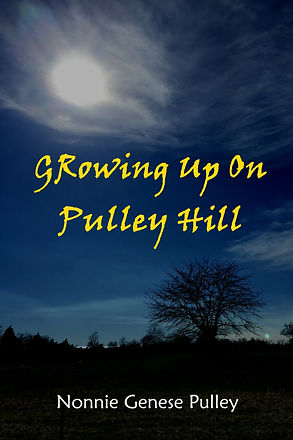 Growing Up on Pulley Hill