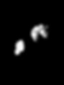 Png TRPAC Logo Black.png