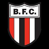 logo-botafogo-sp-2048.png