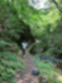 walking_m_1.jpg