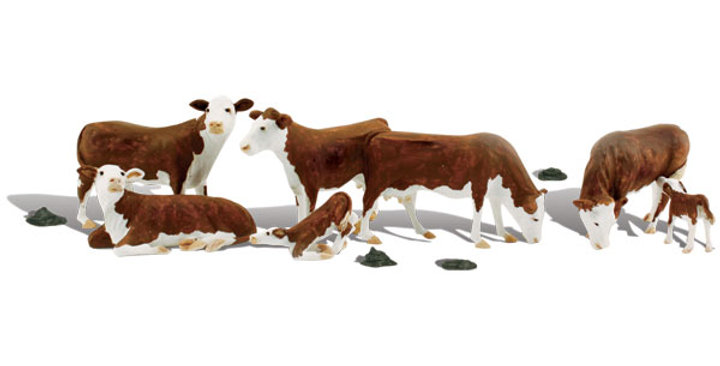 HO Hereford Cows-1843