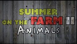 Summer On The Farm 2