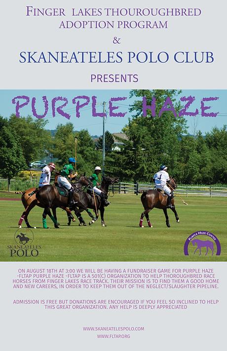 PurpleHaze_2019.png