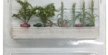 Summer Vegetable Garden - 95722