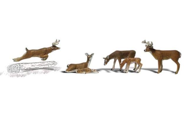 HO Deer-1884