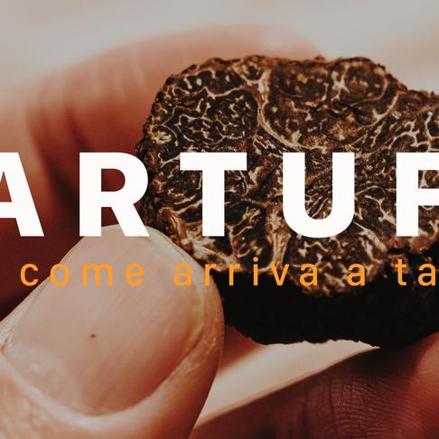 Dalla terra alla tavola: la storia del Tartufo
